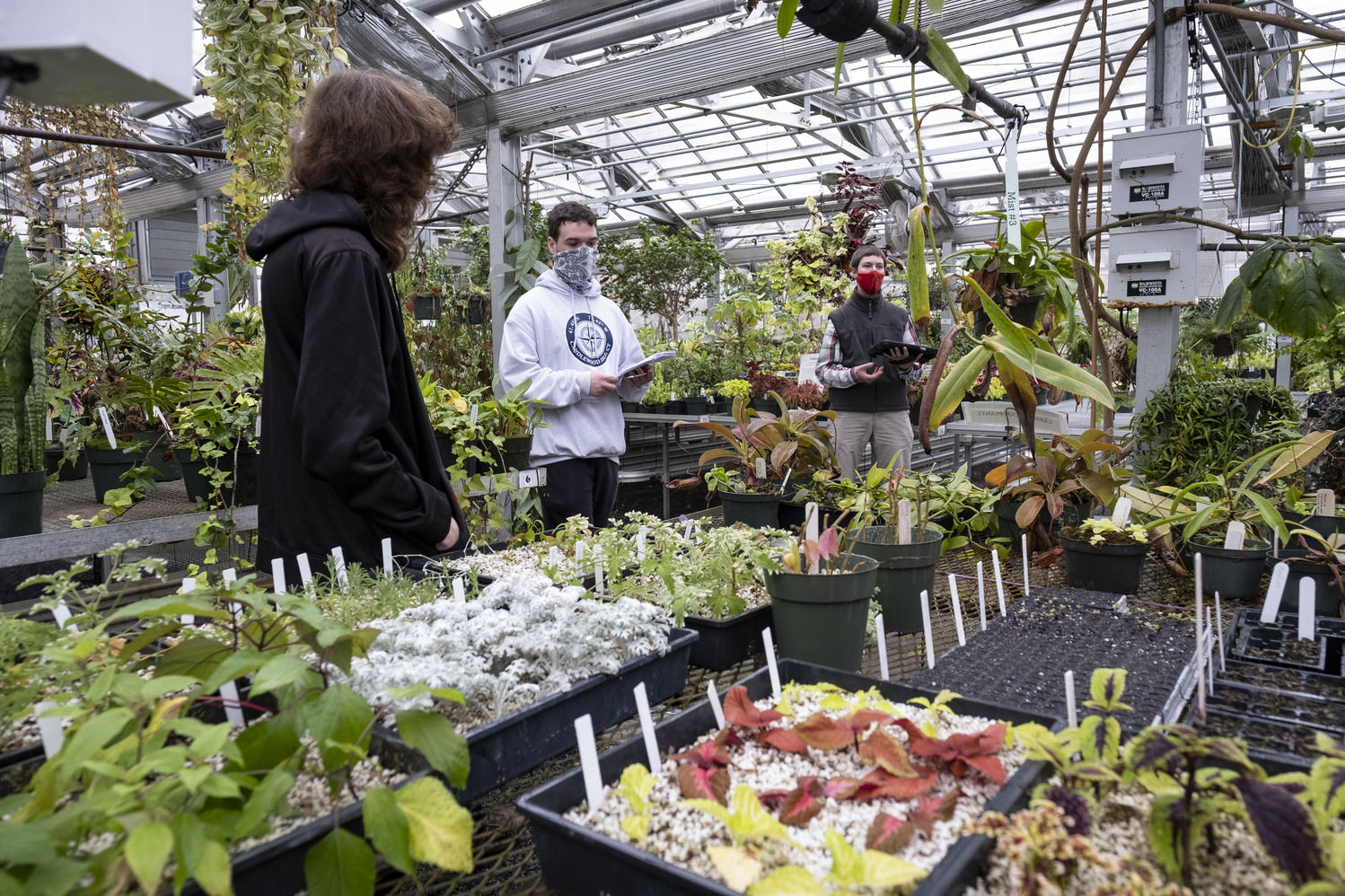 Tyler School of Art and Architecture students in Horticulture Program in Ambler Greenhouse